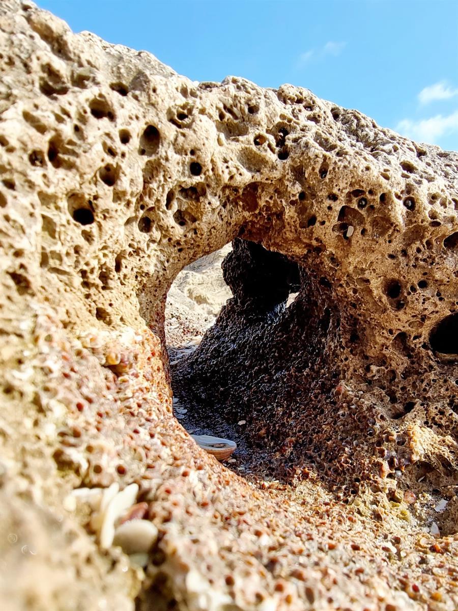 חור בסלע